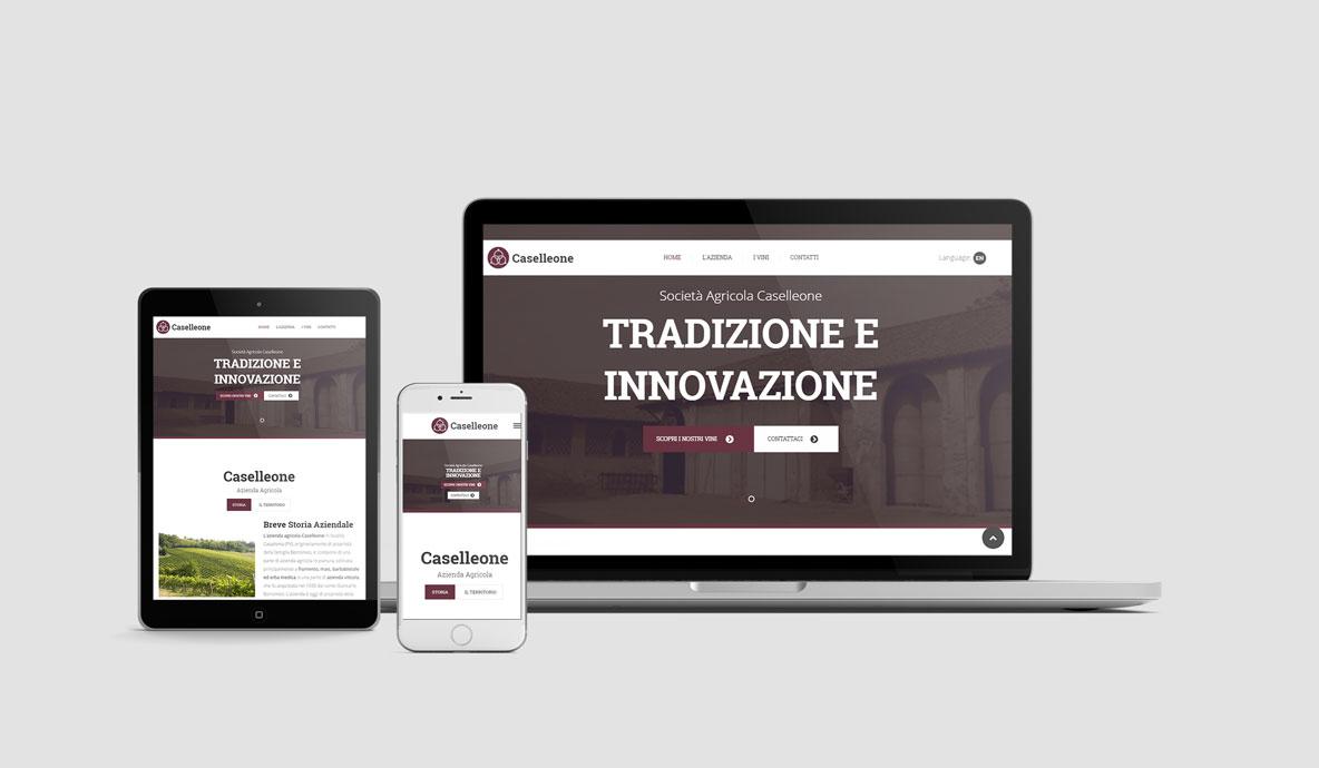Realizzazione siti internet - Caselleone - Home Caselleone.com su diversi devices