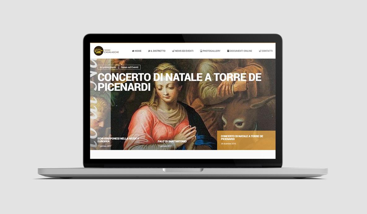 Realizzazione siti internet - Distretto Terre Casalasche - Homepage
